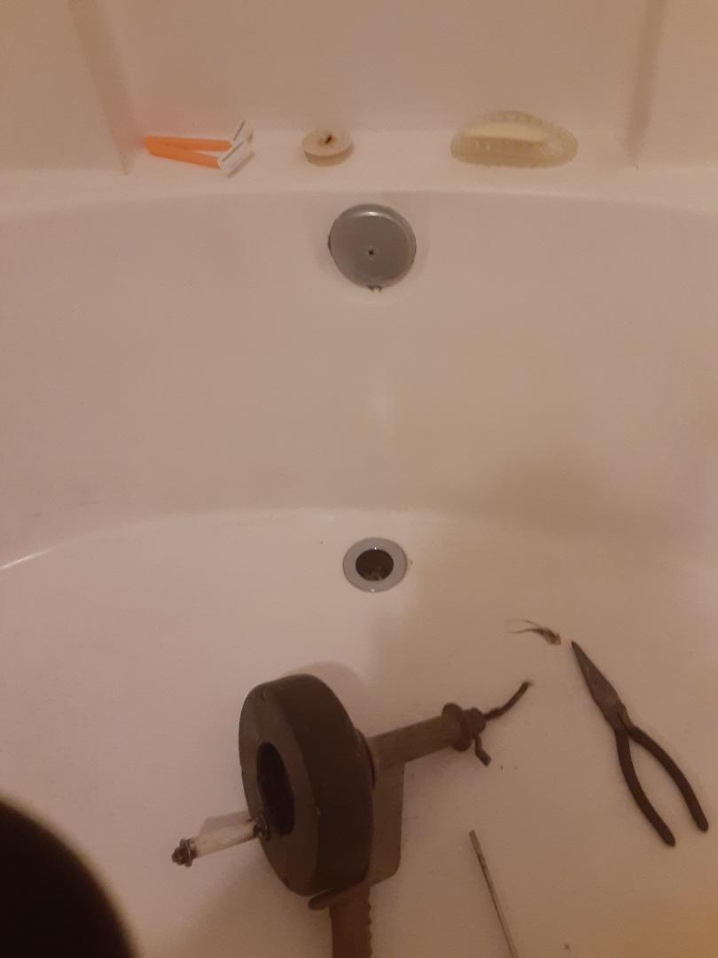 Daphne, AL - Tub stoppage