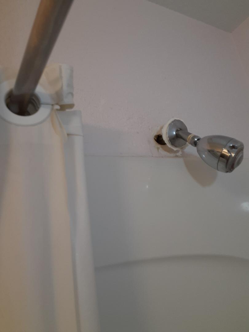 Mobile, AL - Leaks in wall