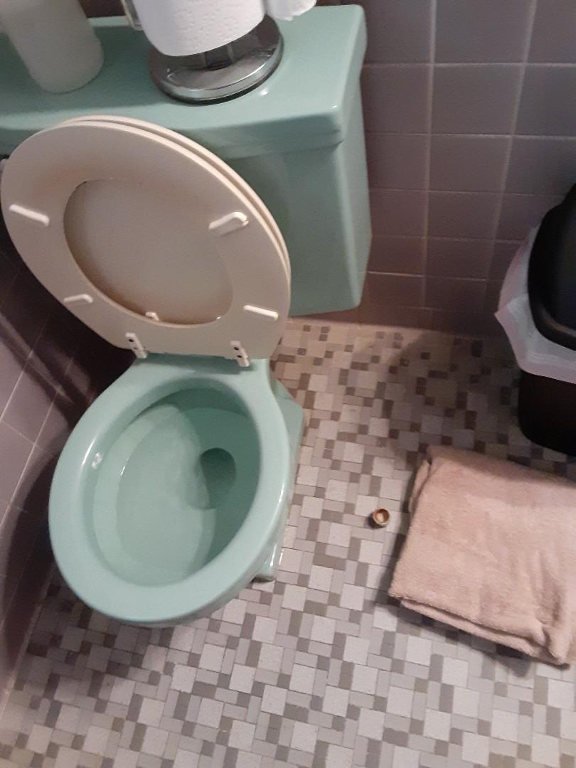 Prichard, AL - Toilet Leaks at base on floor