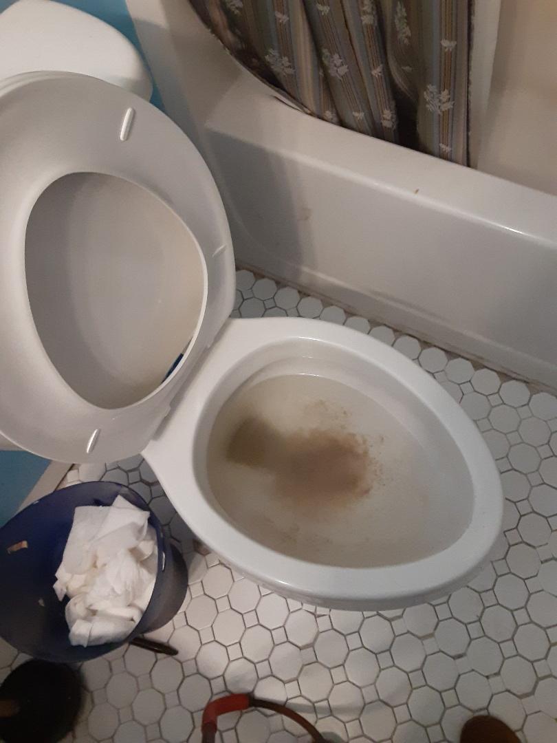 Prichard, AL - Plumbing services on toilet stoppage