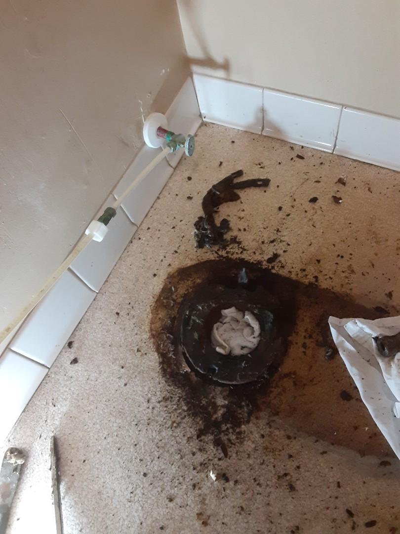Mobile, AL - Plumbing services on toilet floor flange drain