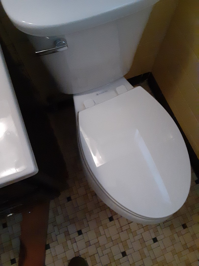 Prichard, AL - Plumbing services on toilet reset toilet to floor
