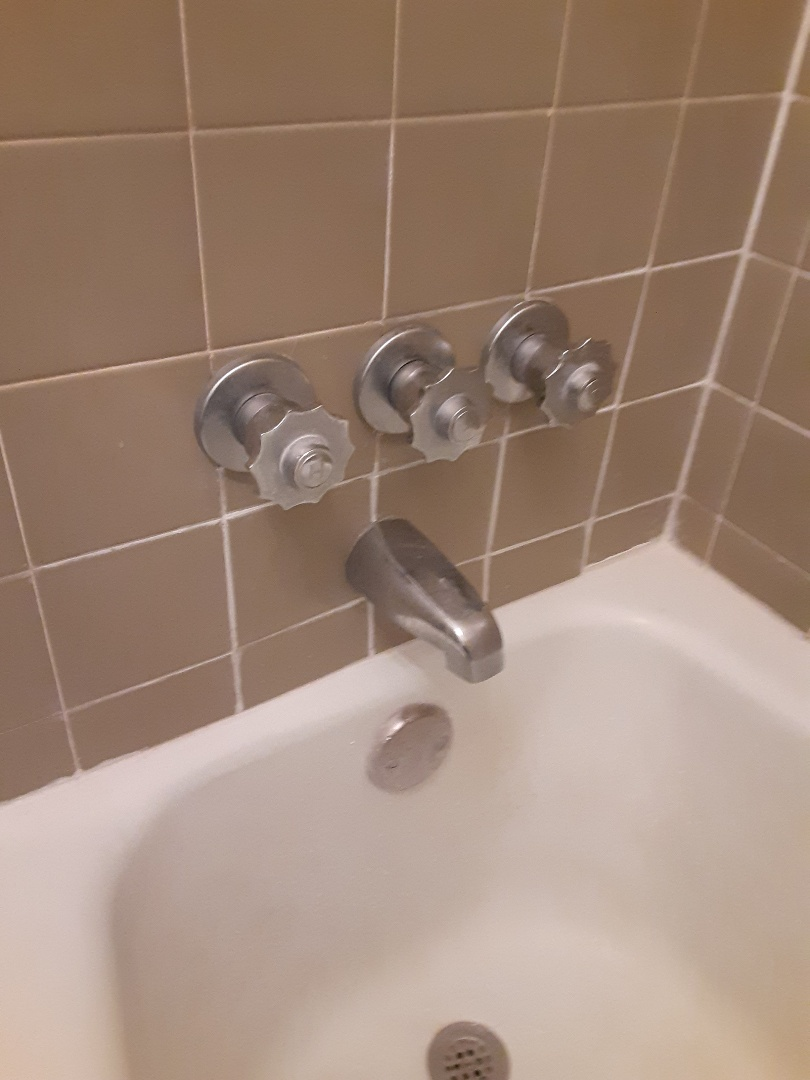 Chickasaw, AL - Plumbing services on tub Faucet Leaks in satsuma Ala
