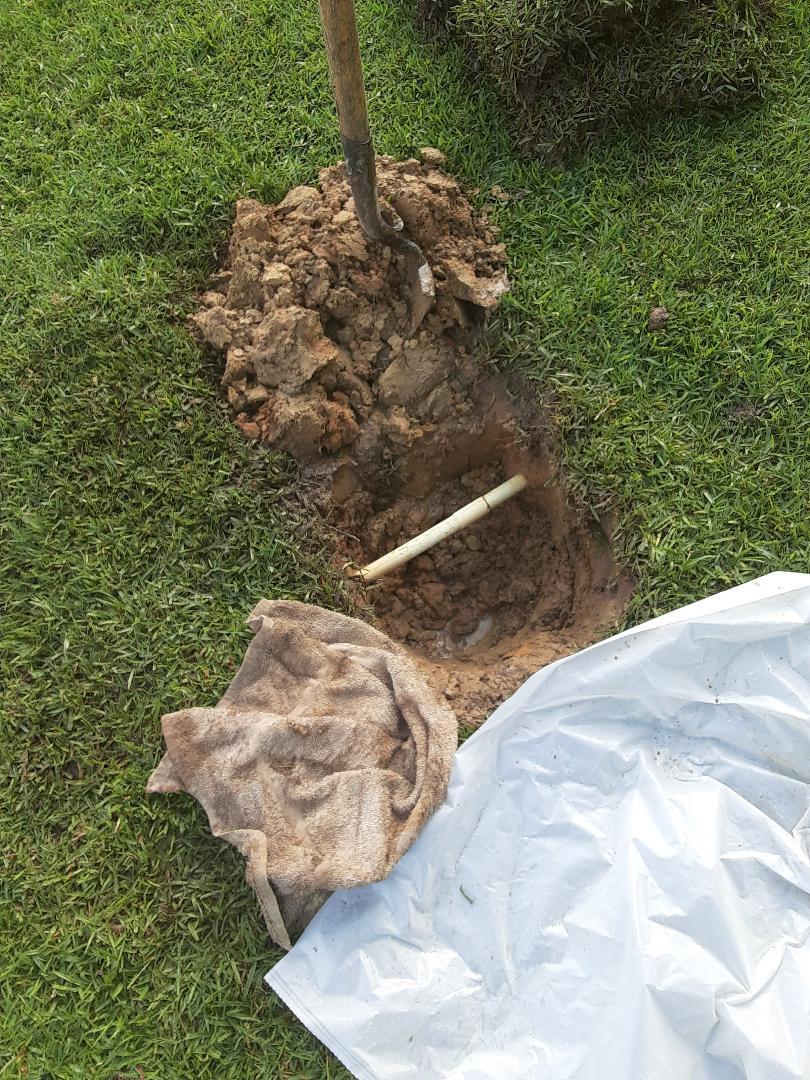 Daphne, AL - Plumbing services on water Leaks in Mobile Ala