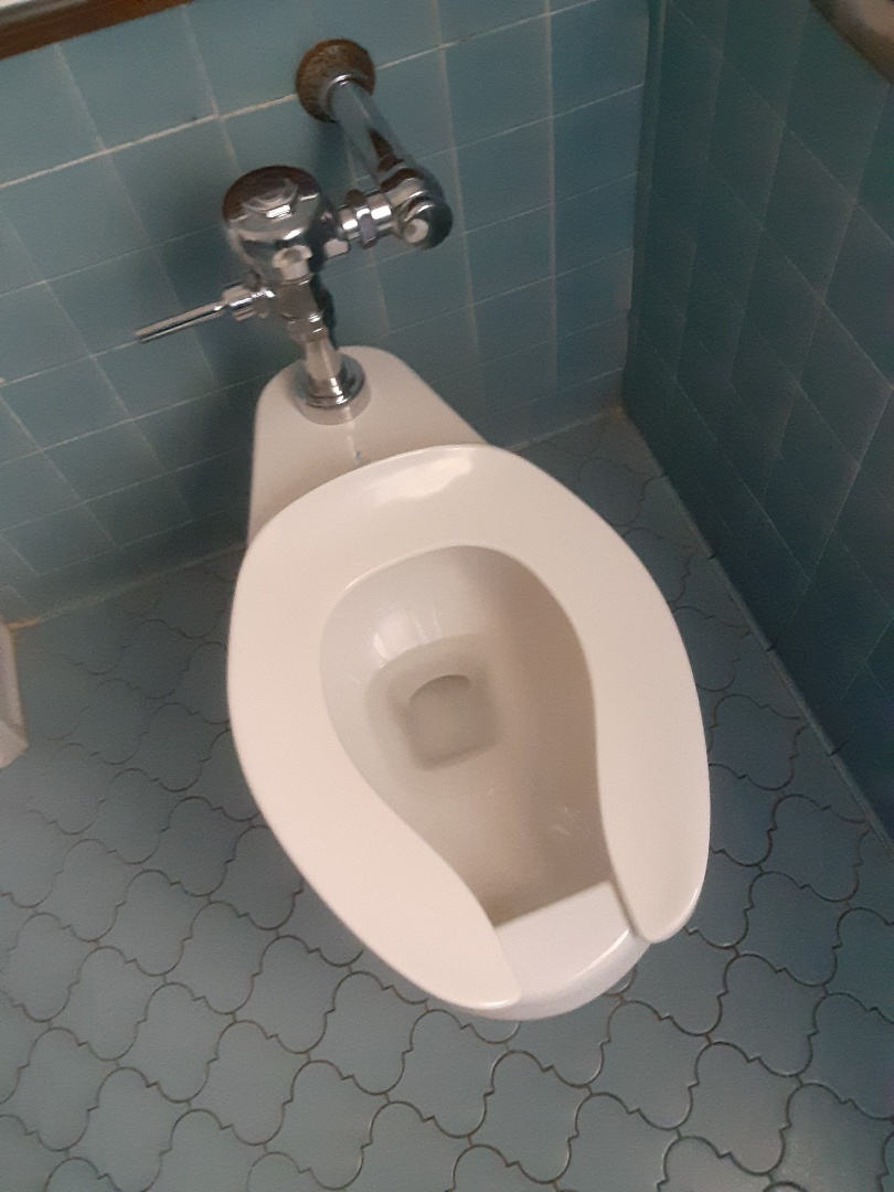 Daphne, AL - Plumbing services on toilet stoppage in Daphne Ala
