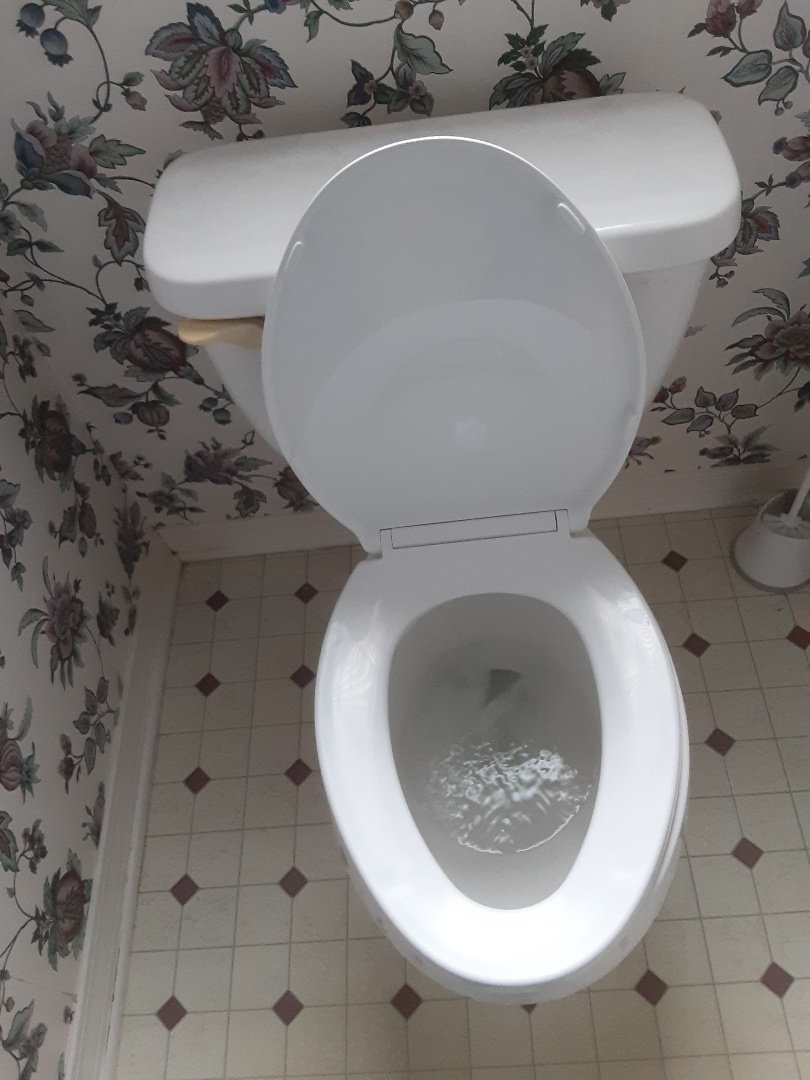 Mobile, AL - Plumbing services on toilet stoppage in Mobile Ala