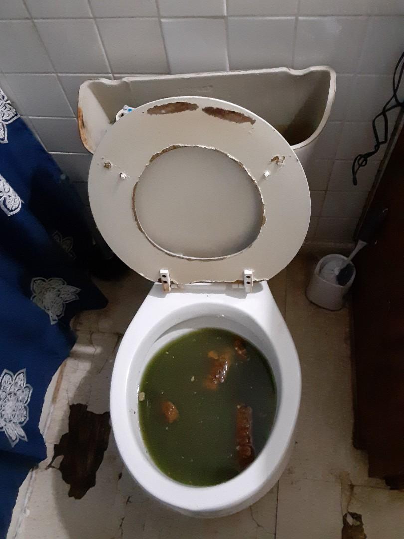 Prichard, AL - Plumbing services on toilet stoppage in Mobile Ala