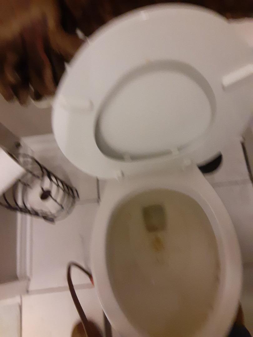 Semmes, AL - Plumbing services on toilet stoppage in semmes Ala