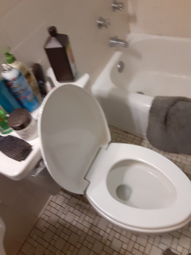 Mobile, AL - Plumbing services on toilet stoppage sink drain stoppage in Mobile Ala