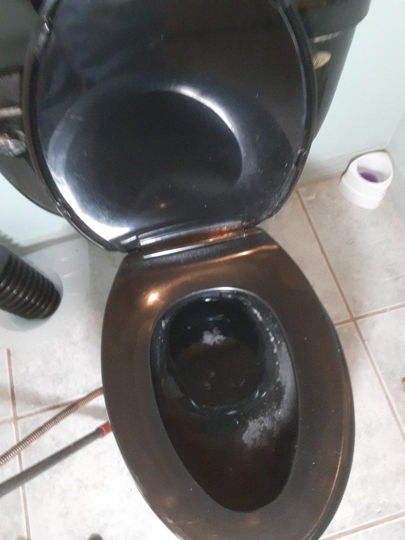 Stockton, AL - Plumbing service on toilet stoppage in Stockton Ala