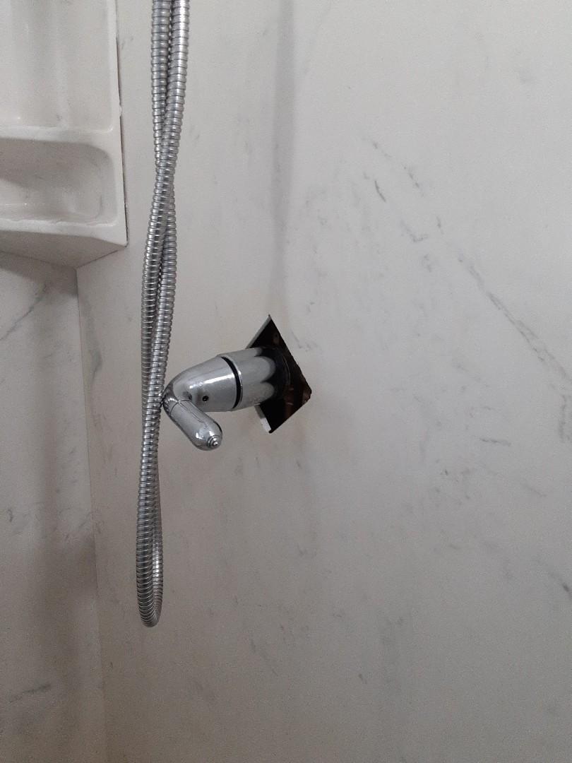 Daphne, AL - Plumbing service on shower Faucet leaks in Daphne Ala