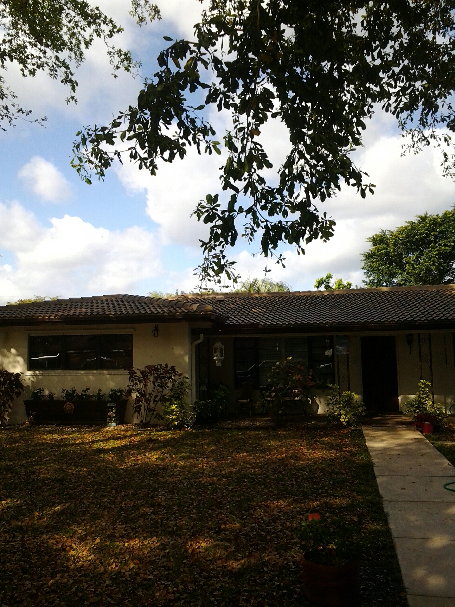 Pembroke Pines, FL - Clean edges and roof acide roof