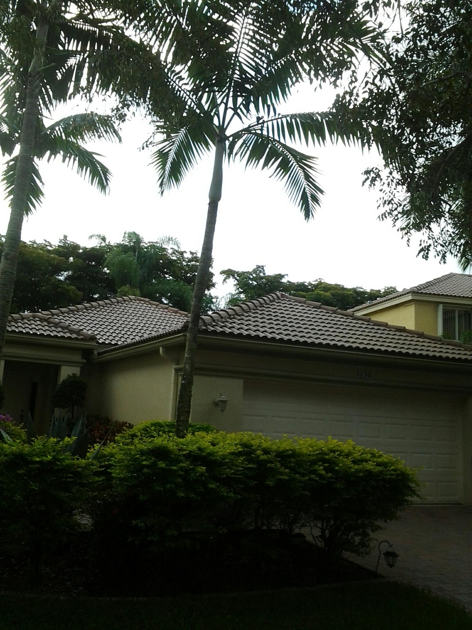Weston, FL - Roofacide roof