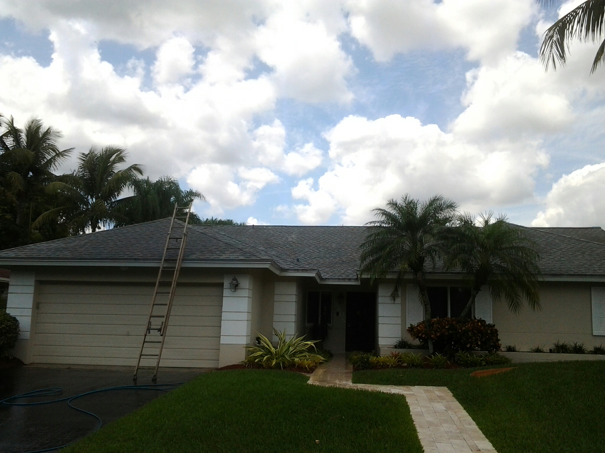 Cooper City, FL - Roof restore  and clean roof