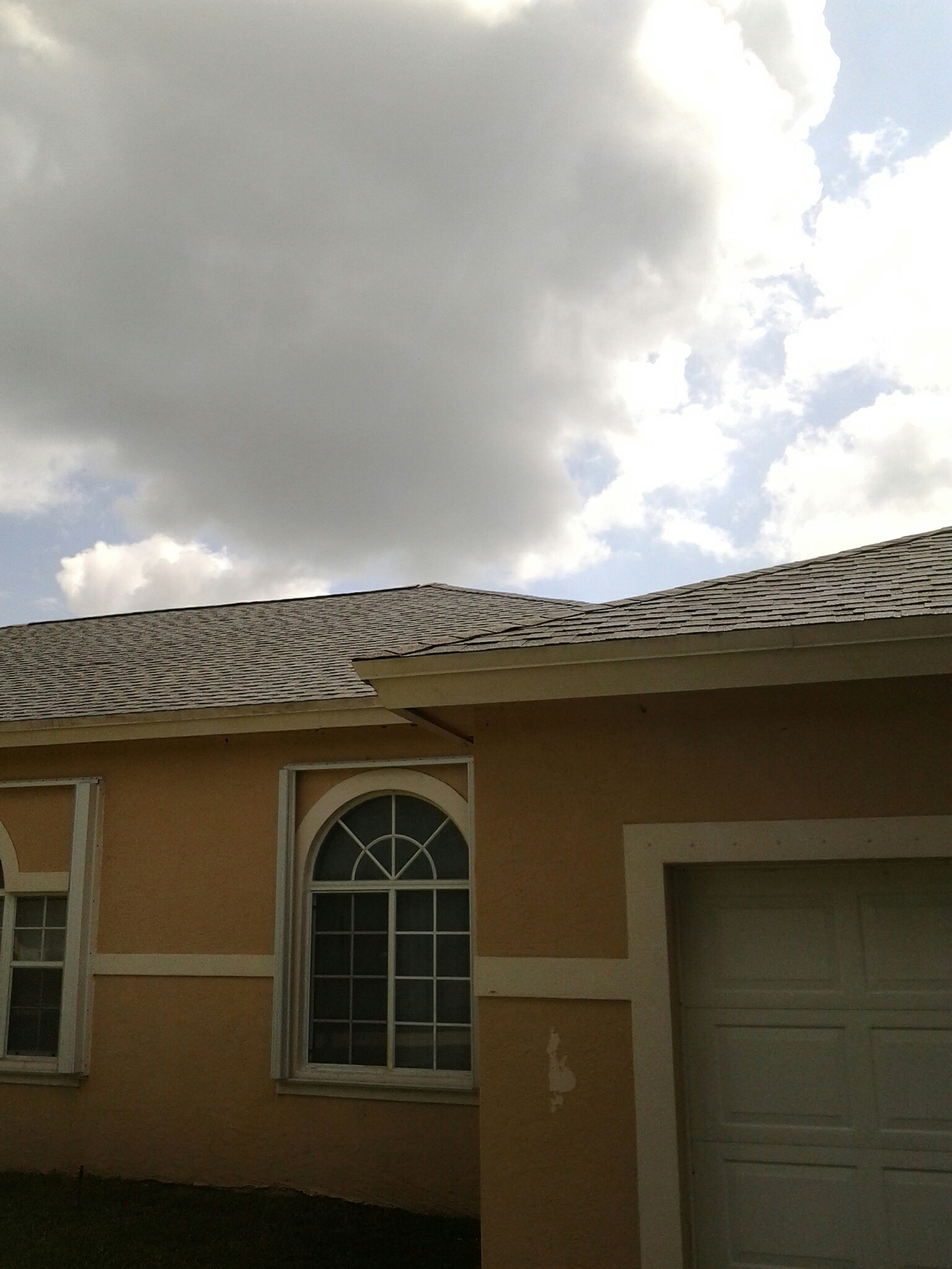 Oakland Park, FL - Roof restore  and clean roof