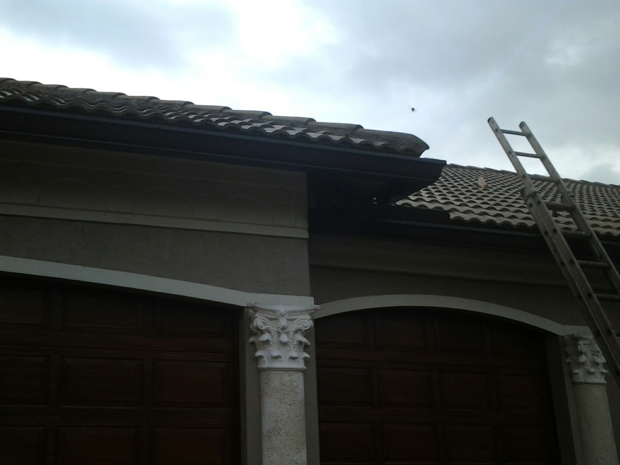 Plantation, FL - Clean edges and roofacide roof