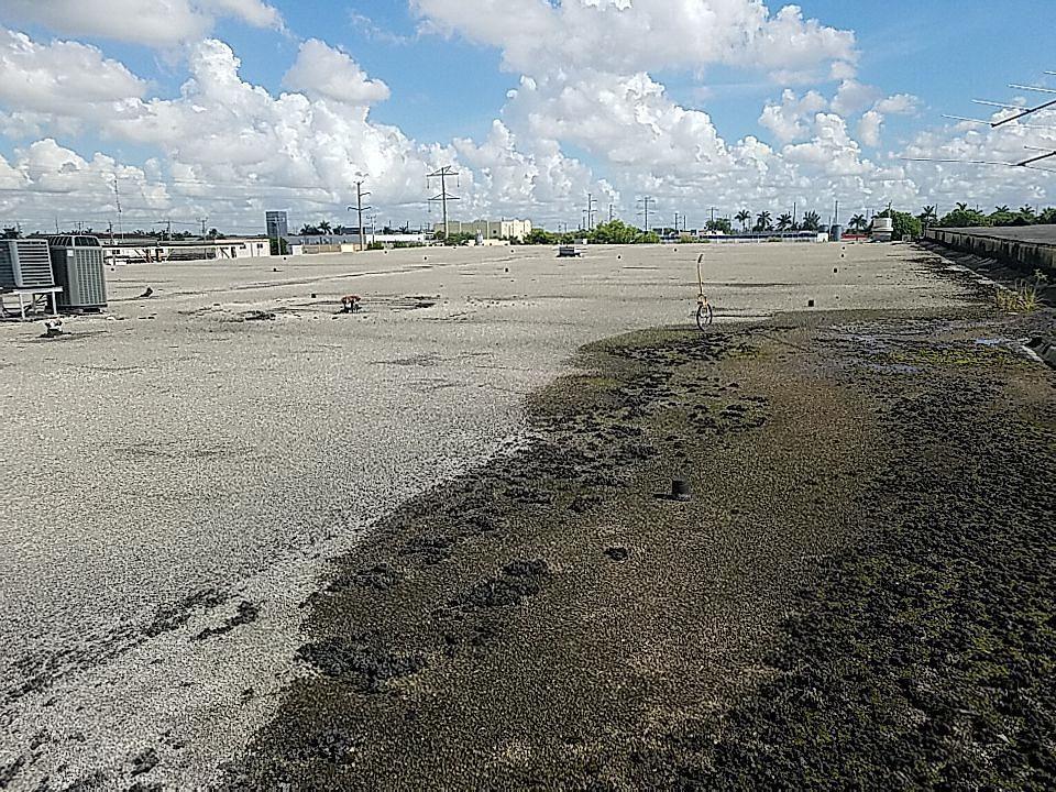 Doral, FL - Gaf Everguard TPO  commercial reroof estimate in Doral, FL