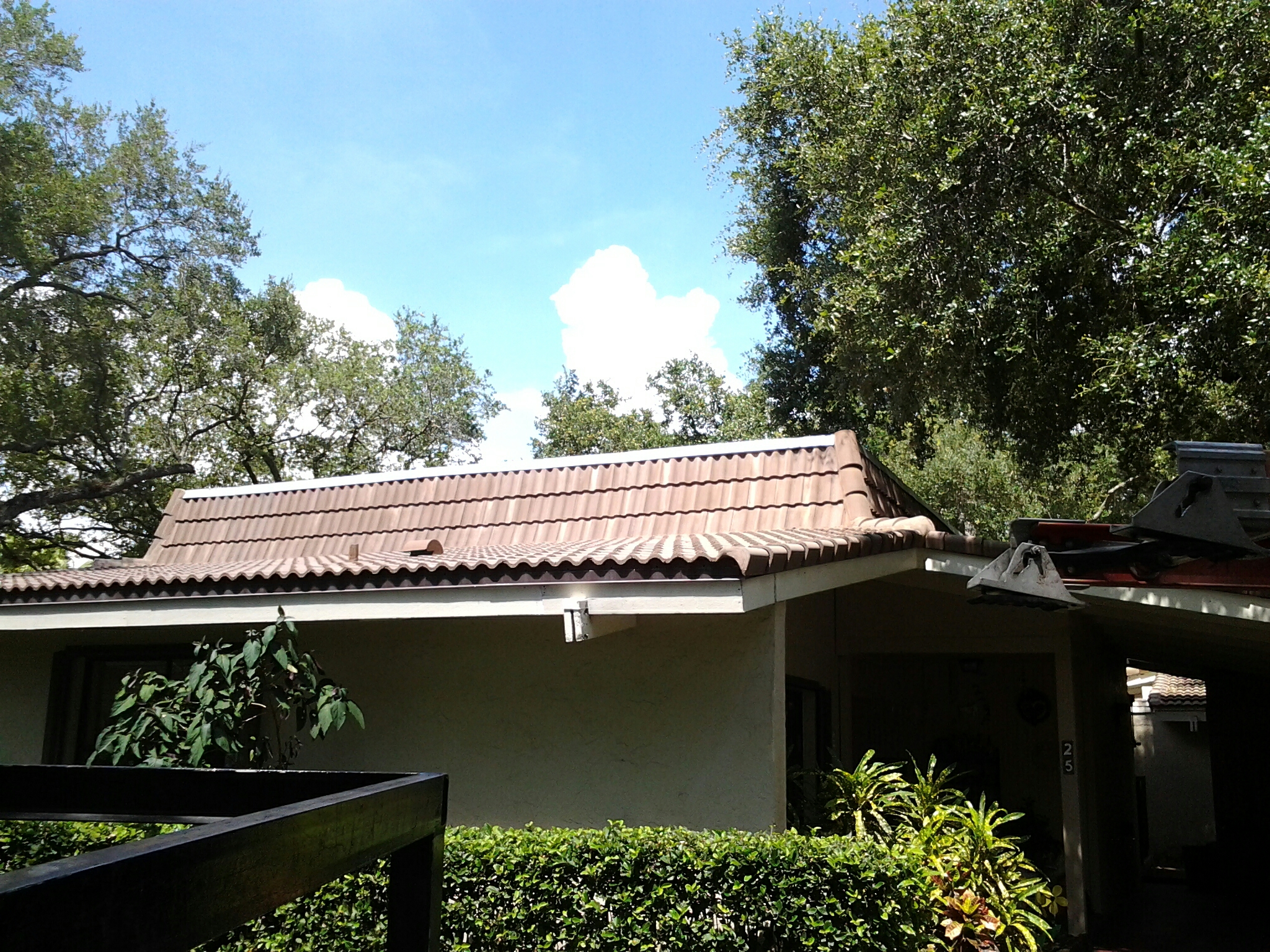 Weston, FL - Blow off roof and clean up leafs