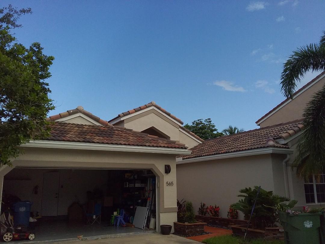 Weston, FL - Clean edges and rc