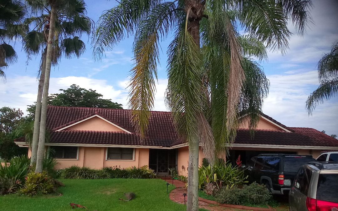Parkland, FL - Roof repair in Davie by Alexis,Israel,Regis,Ron and Duane from Earl W.Johnston Roofing