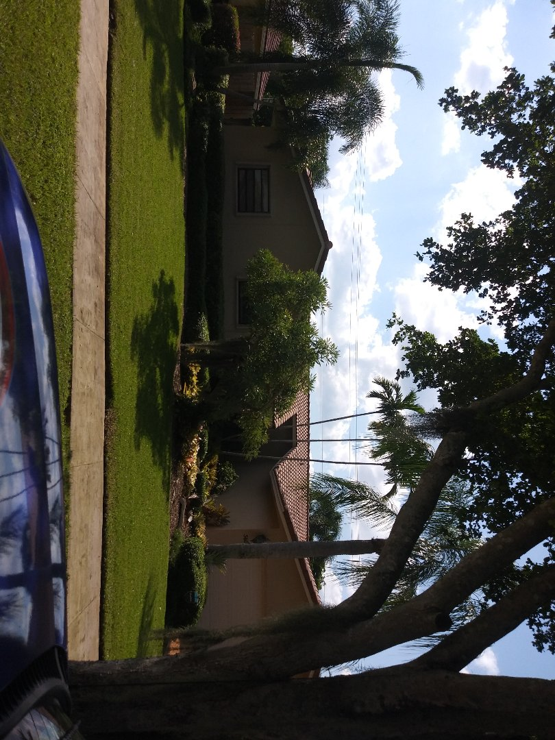 Cooper City, FL - Spot clean and Roofacide service guys Darron and Gary
