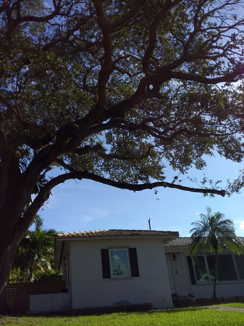 Miami Shores, FL - A finished roof repair in Miami Shores by Duane and Oliver from Earl W Johnston Roofing