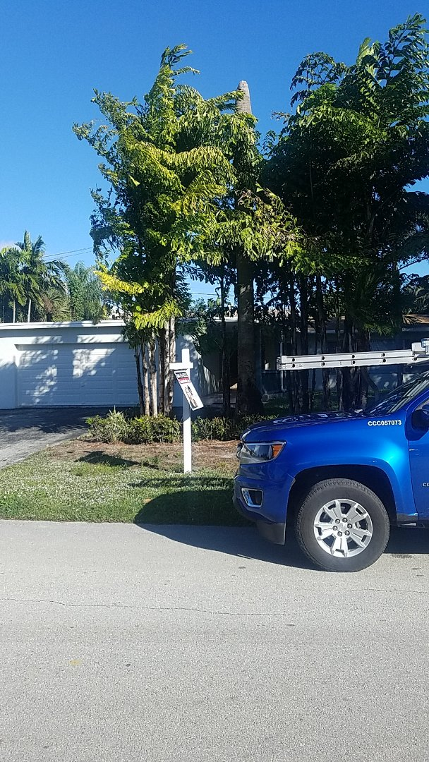 Fort Lauderdale, FL - GAF  TPO flat roof replacement estimate by Aj from Earl Johnston Roofing Company