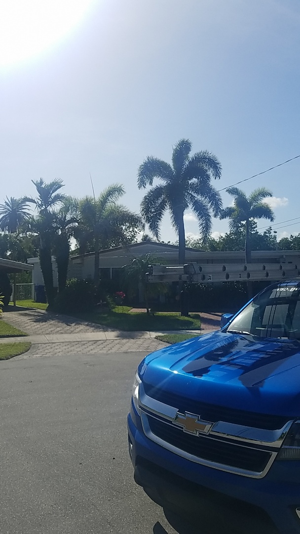 Hollywood, FL - Flat roof replacement estimate by Aj from Earl Johnston Roofing Company