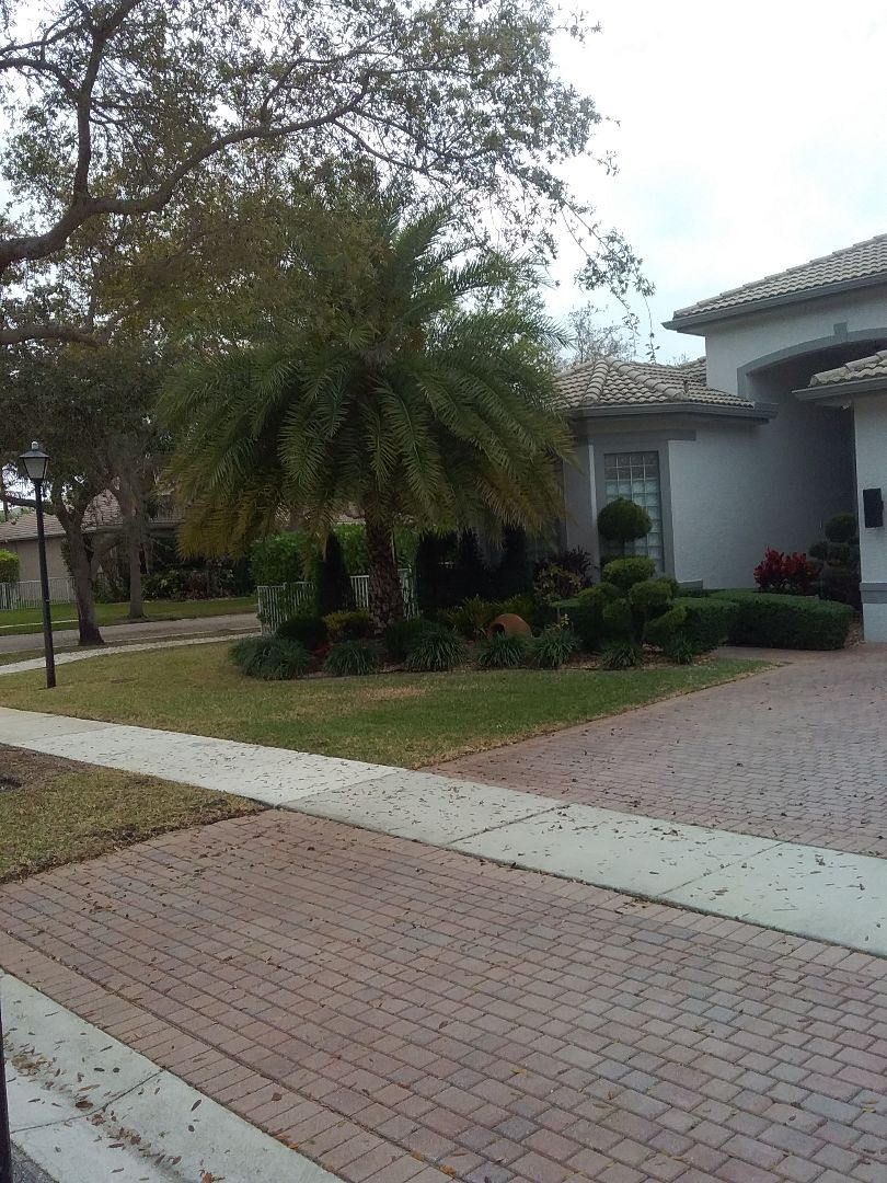 Roofing Contractor In Miramar Fl Earl W Johnston Roofing