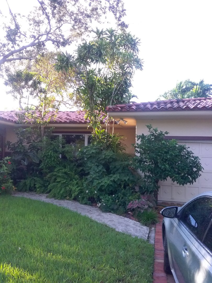 Miami Shores, FL - REPAIR tiles roof by Oliver and Alexis from early w Johnson roofing