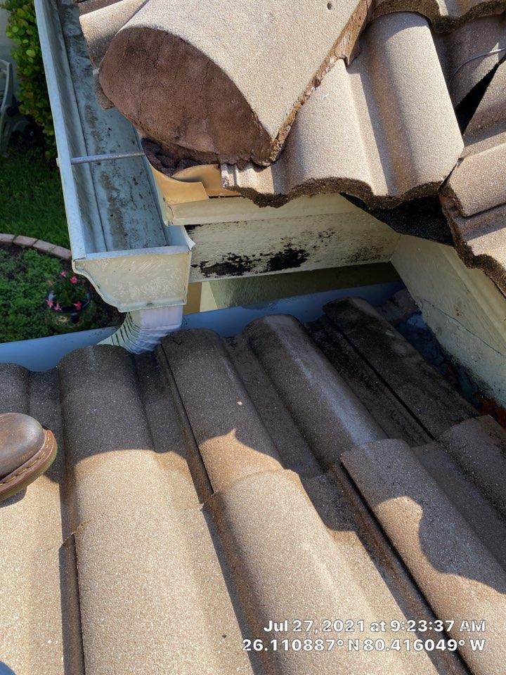 Tile roof leak repair estimate in Weston, FL by Mike Wilde and Earl Johnston Roofing