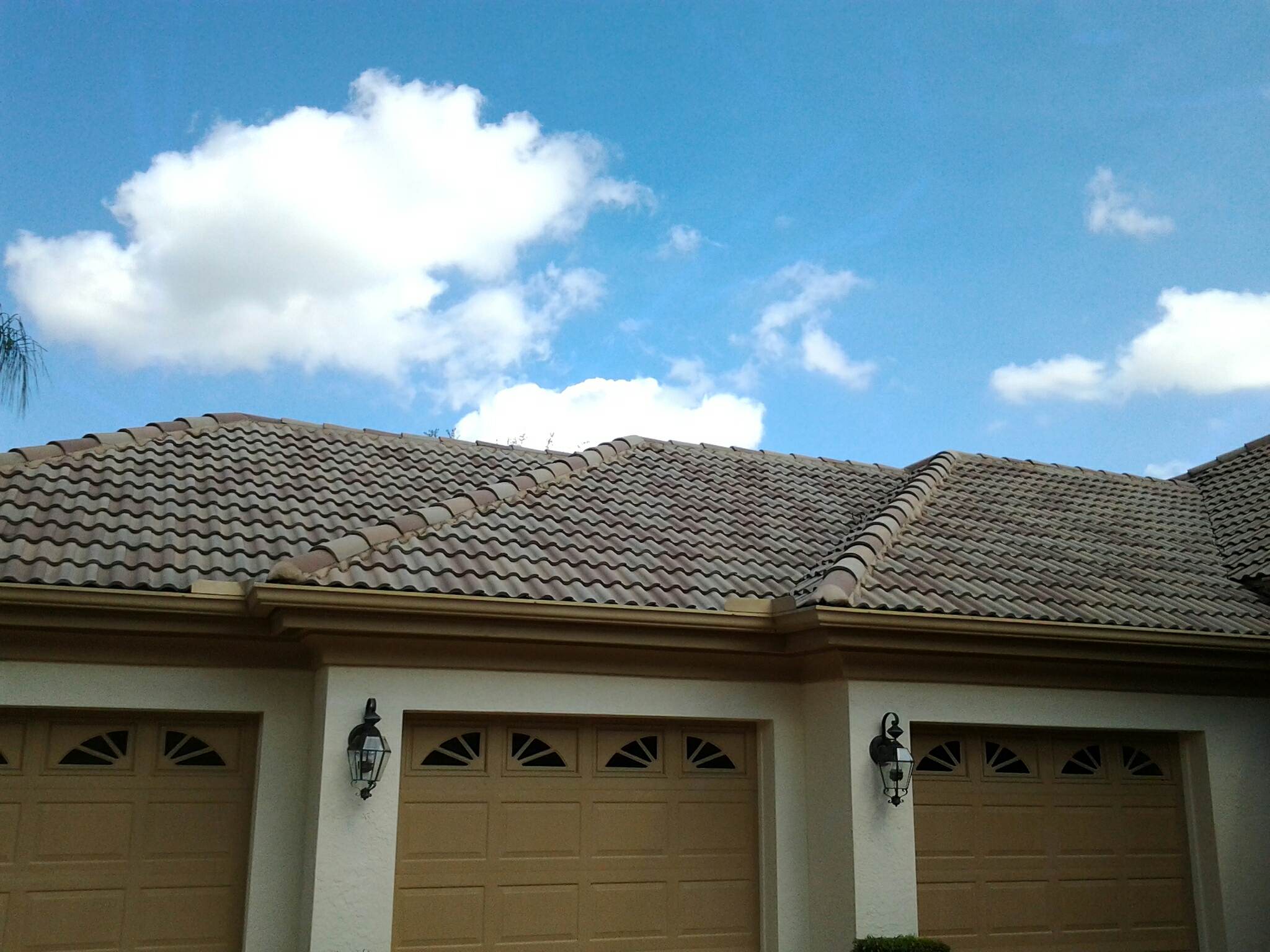West Palm Beach, FL - Roof a cide in Palm Beach Duane & Gary Earl W.Johnston Roofing Roof A Cide takes 100 % control of mold, mildew, fungus and algae taking over your roof.