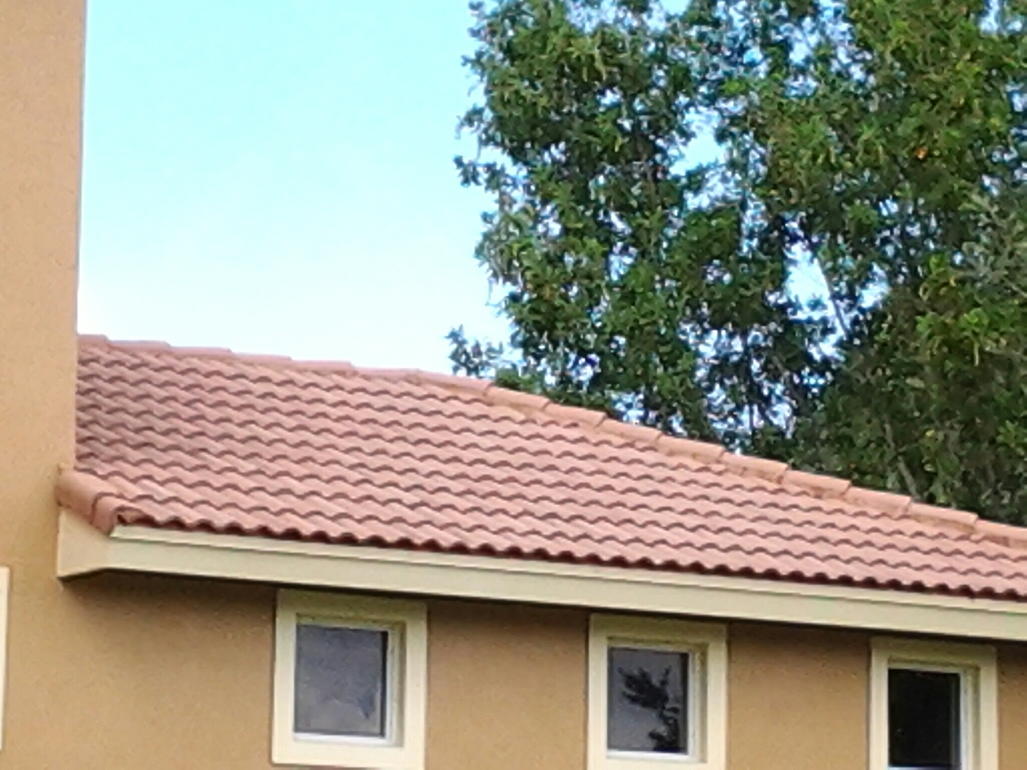 West Palm Beach, FL - Roof a cide in Parkland Duane & Gary Earl W.Johnston Roofing Roof A Cide takes 100 % control of mold, mildew, fungus and algae taking over your roof.