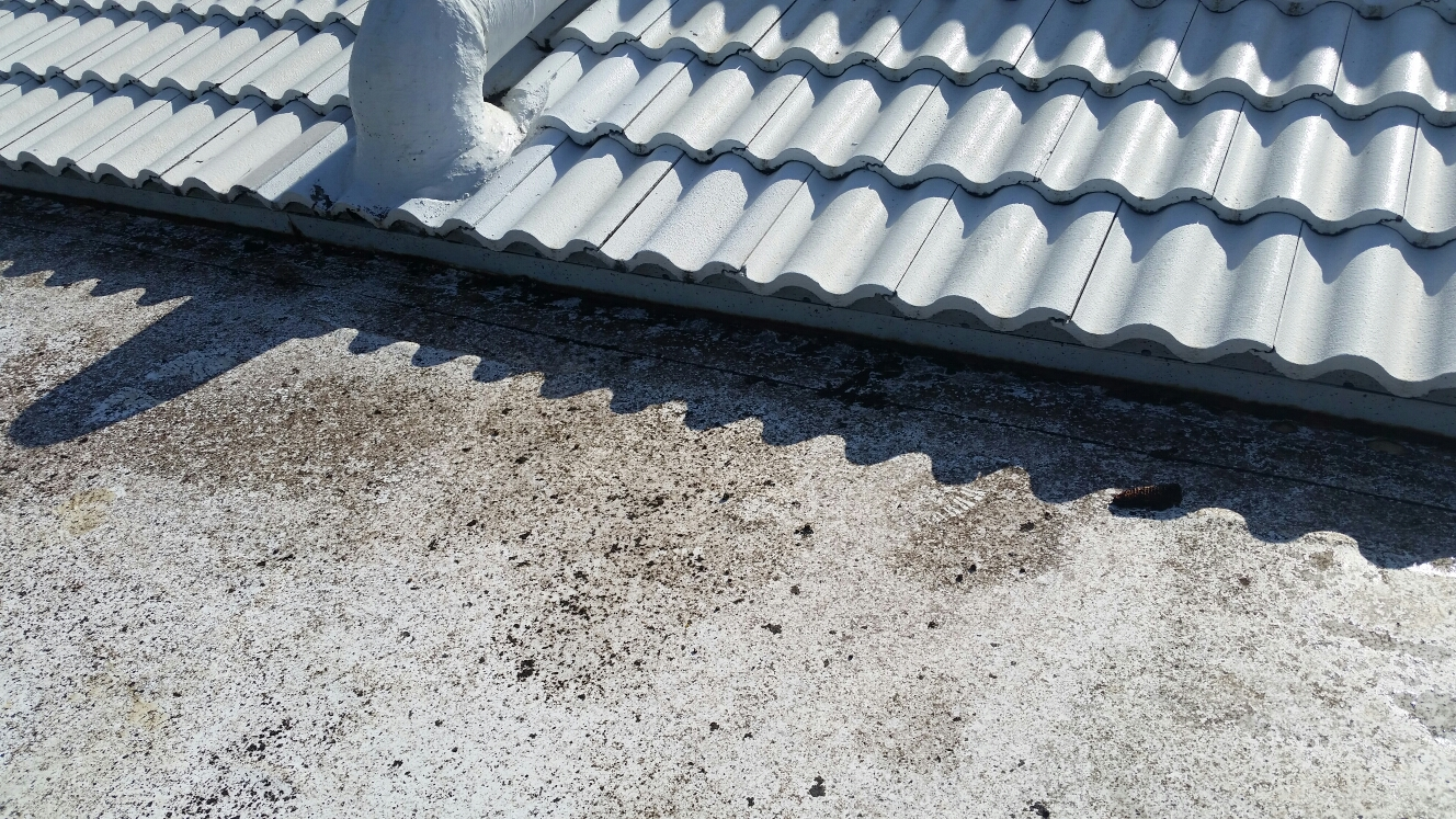 Key Biscayne, FL - Tile and flat roof repair in Key Biscayne, FL