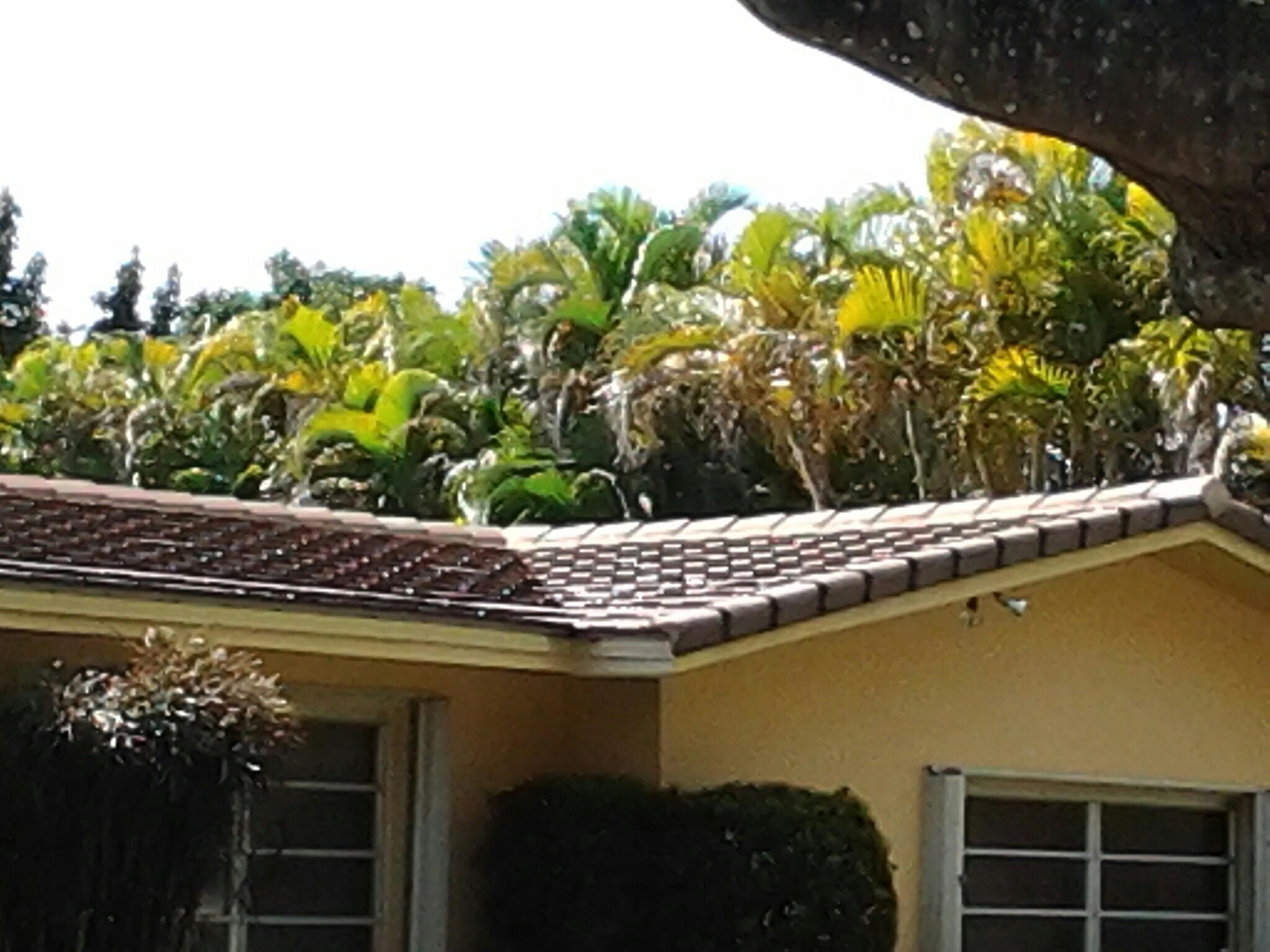 Palmetto Bay, FL - Roof a cide in Miami