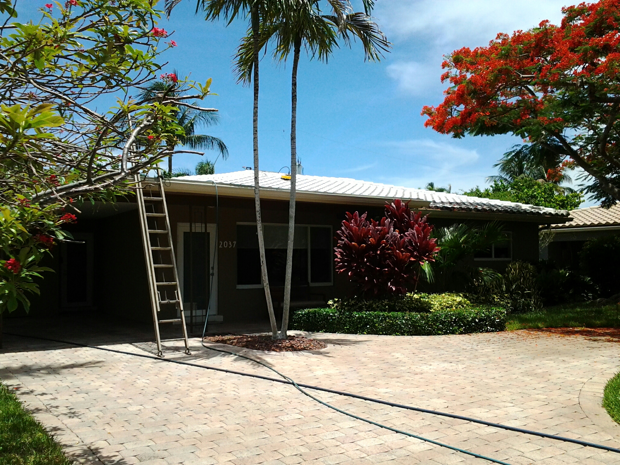 Hollywood, FL - Brandon and Gary pressure cleaning roofs