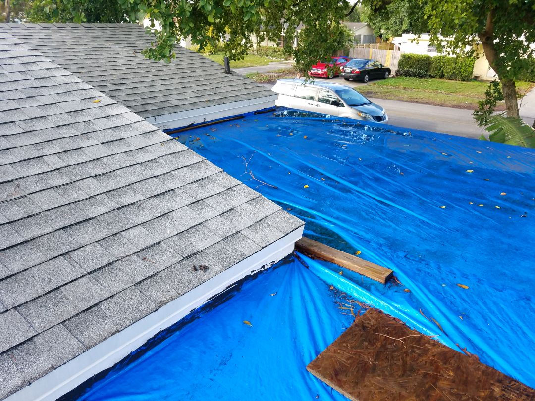Hollywood, FL - Flat roof replacement estimate in Hollywood, FL