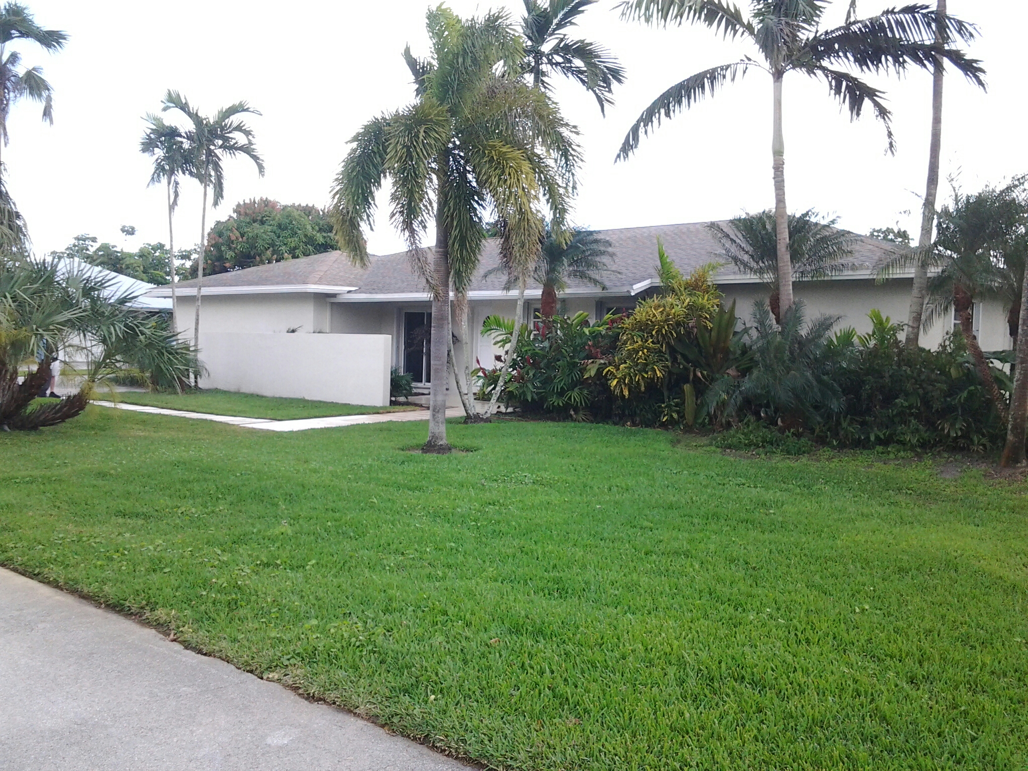 Pinecrest, FL - Brandon and Gary's finished pressure washing in roofacide on a shingle roof