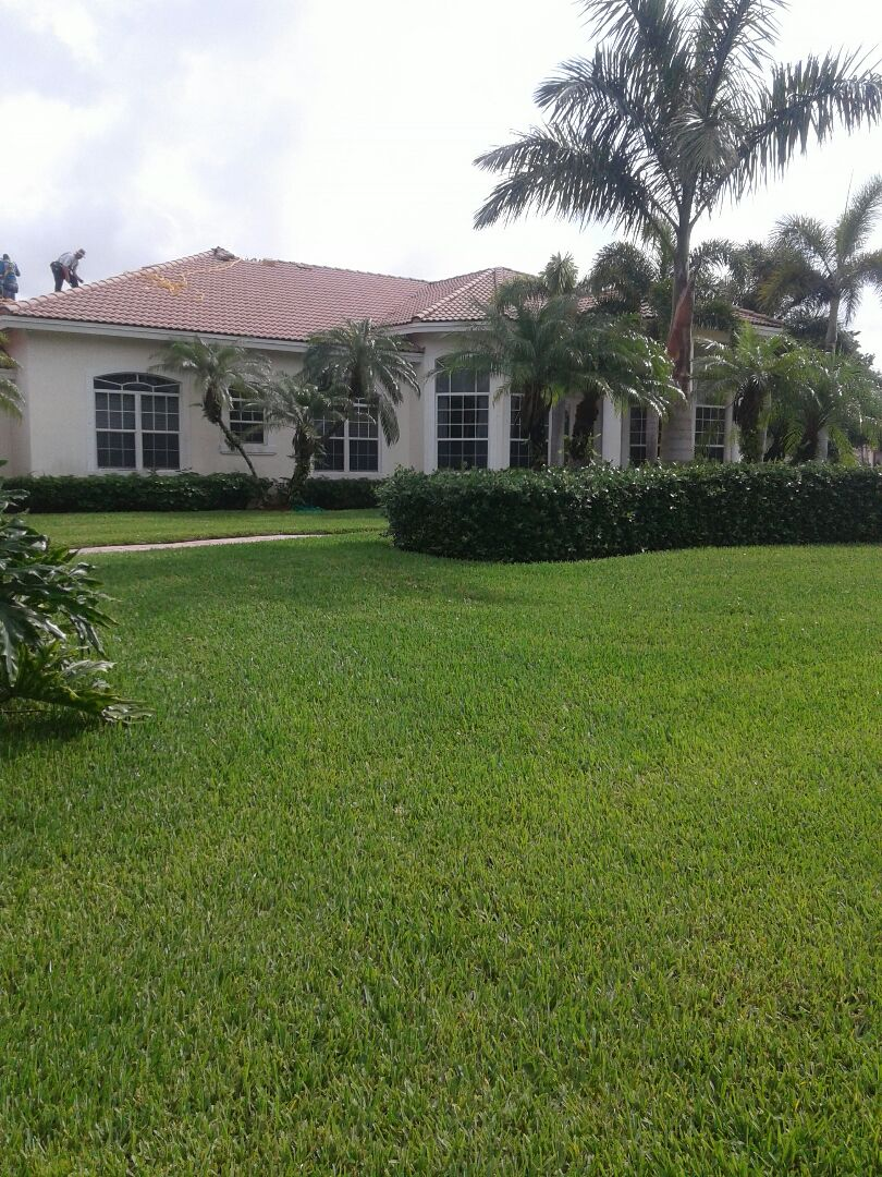 tile roof repair in the city of Davie Florida this repair is being done by Earl W Johnston roofing company Tony Casey Tony and Regis are your technicians