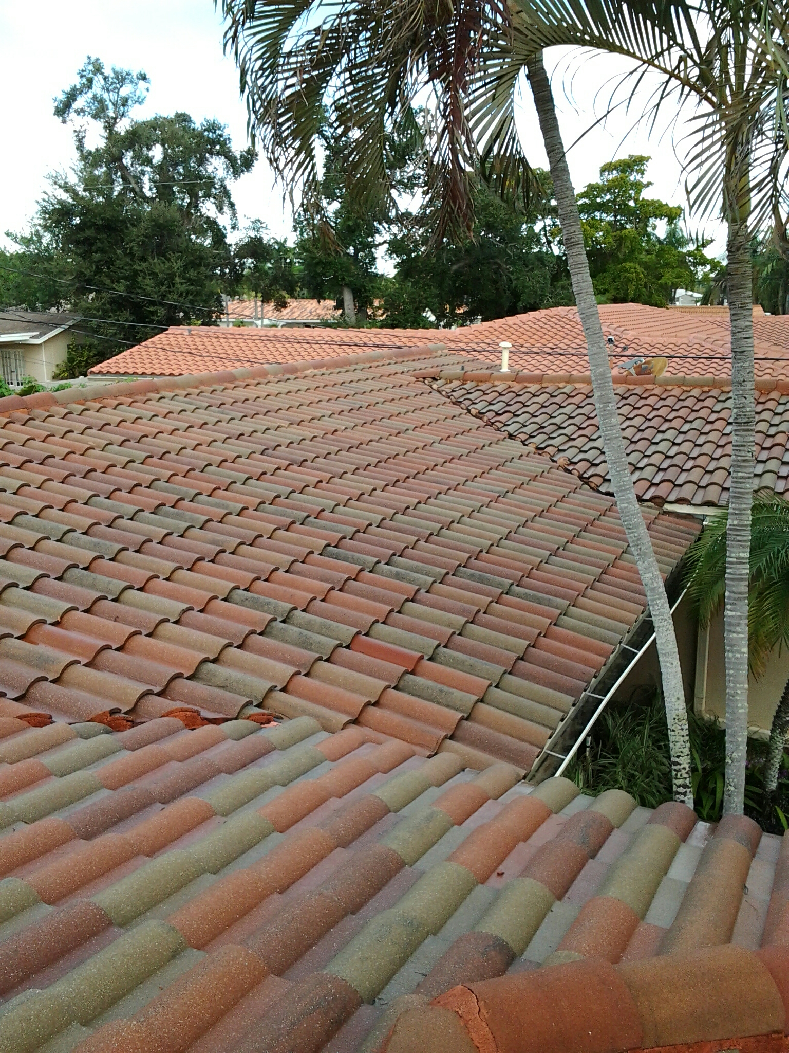 Miami, FL - Clean edges and roofacide roof