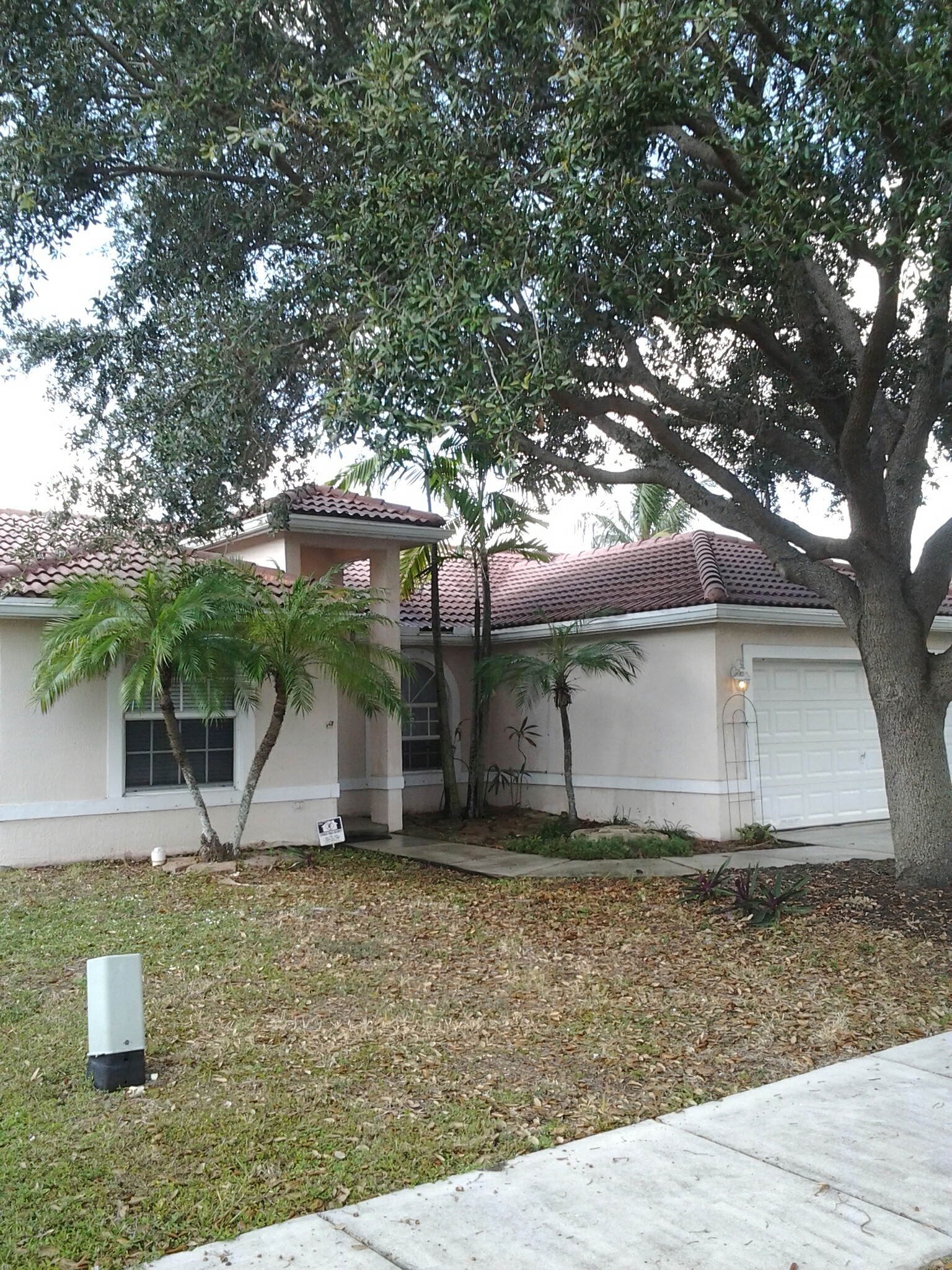 Oakland Park, FL - Clean edges and roofacide