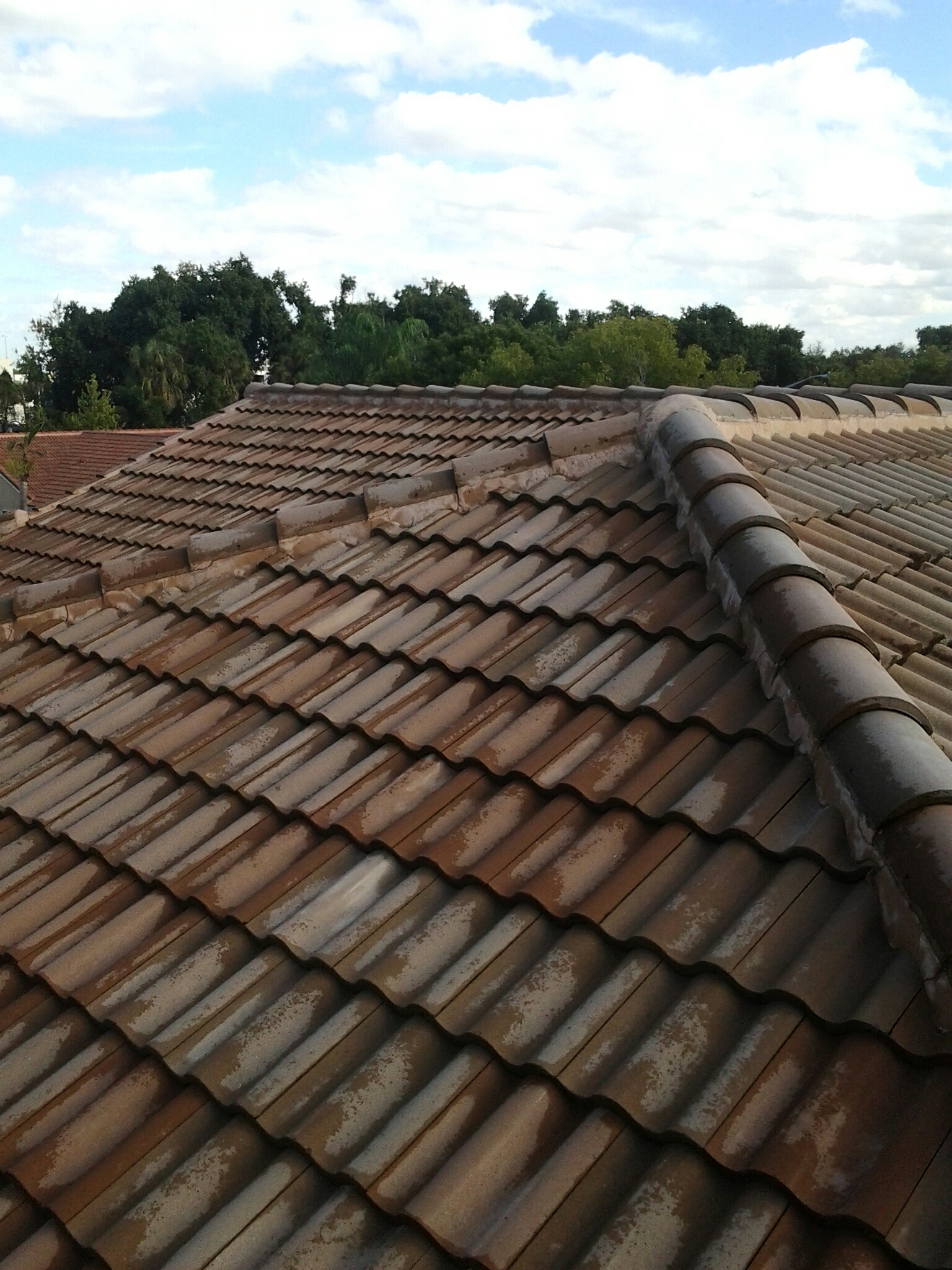Cooper City, FL - Pressure clean and roof a cide roof