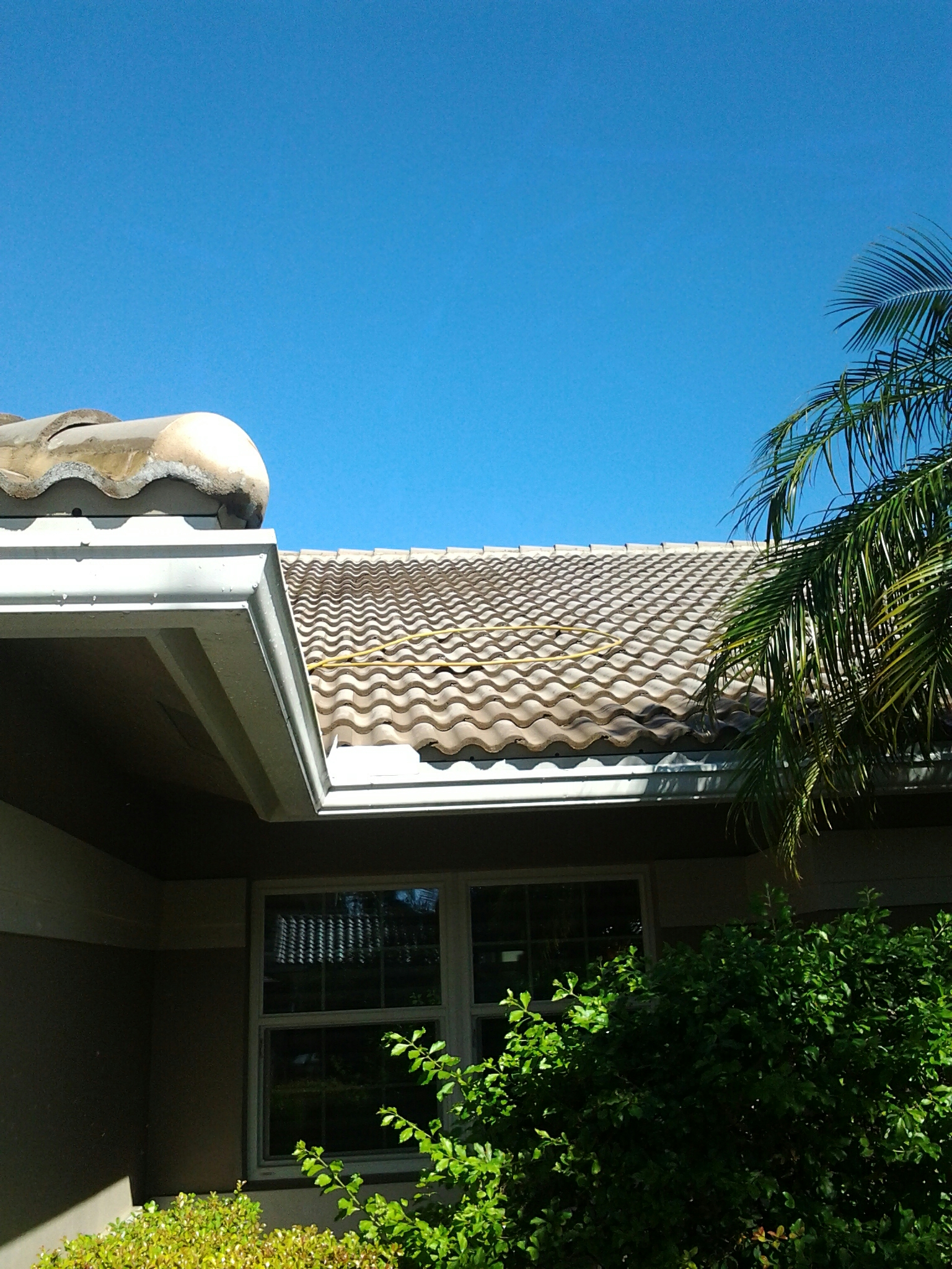 Davie, FL - Pressure clean and roof a cide  roof