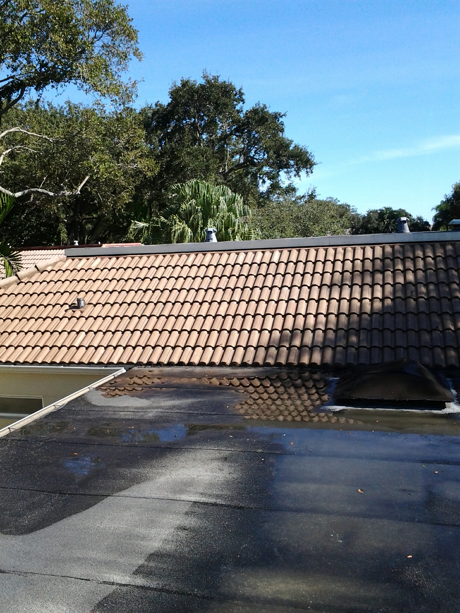 Weston, FL - Pressure clean and roof a cide roof