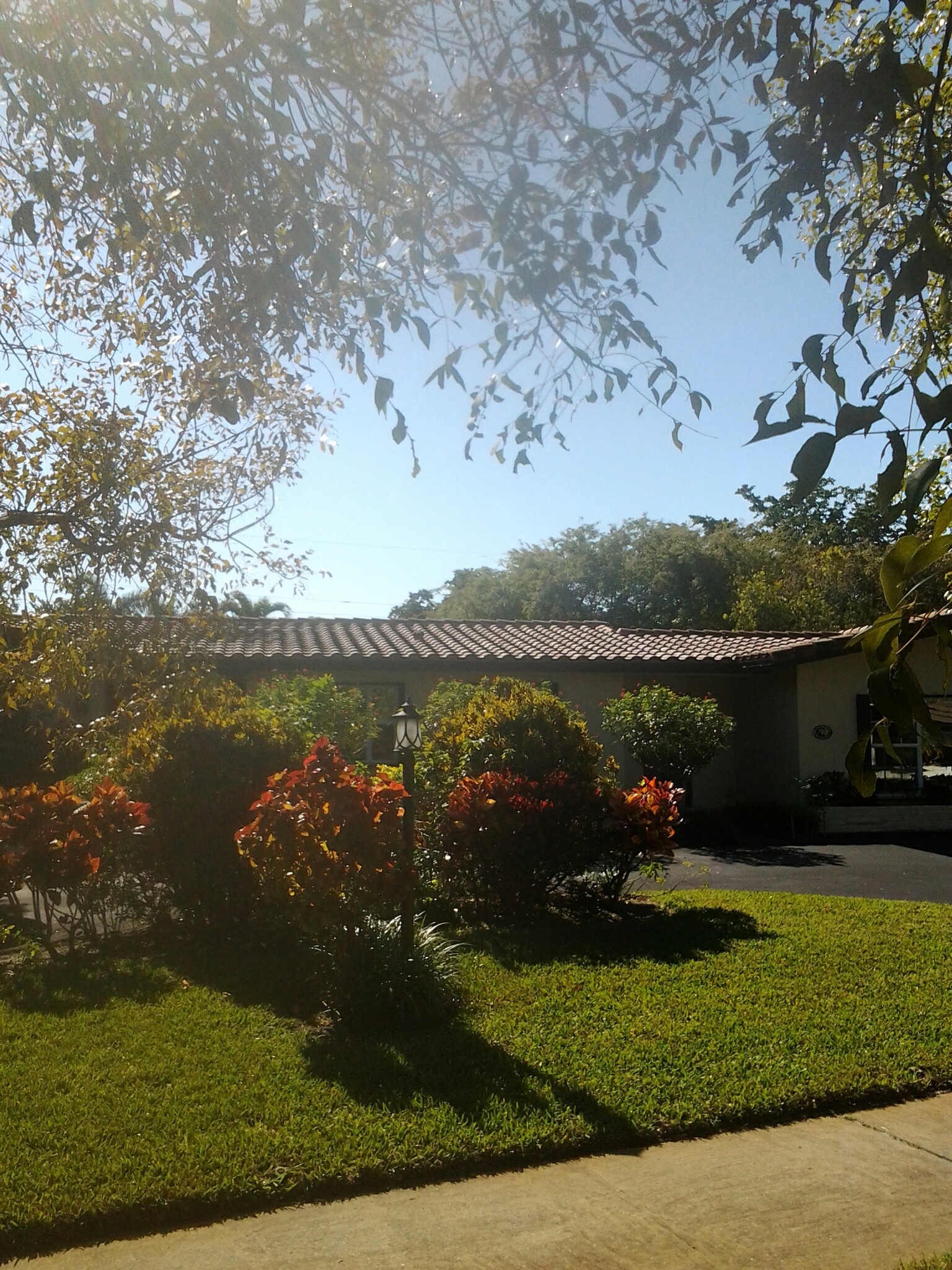 Hollywood, FL - Clean edges and roofacide roof
