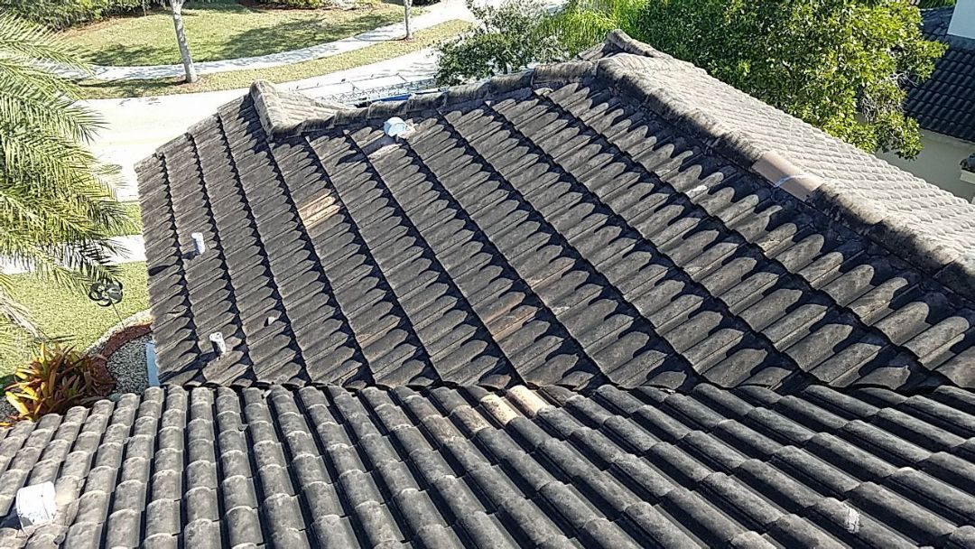 Weston, FL - Roof cleaning and roof-a-cide estimate in Weston,FL
