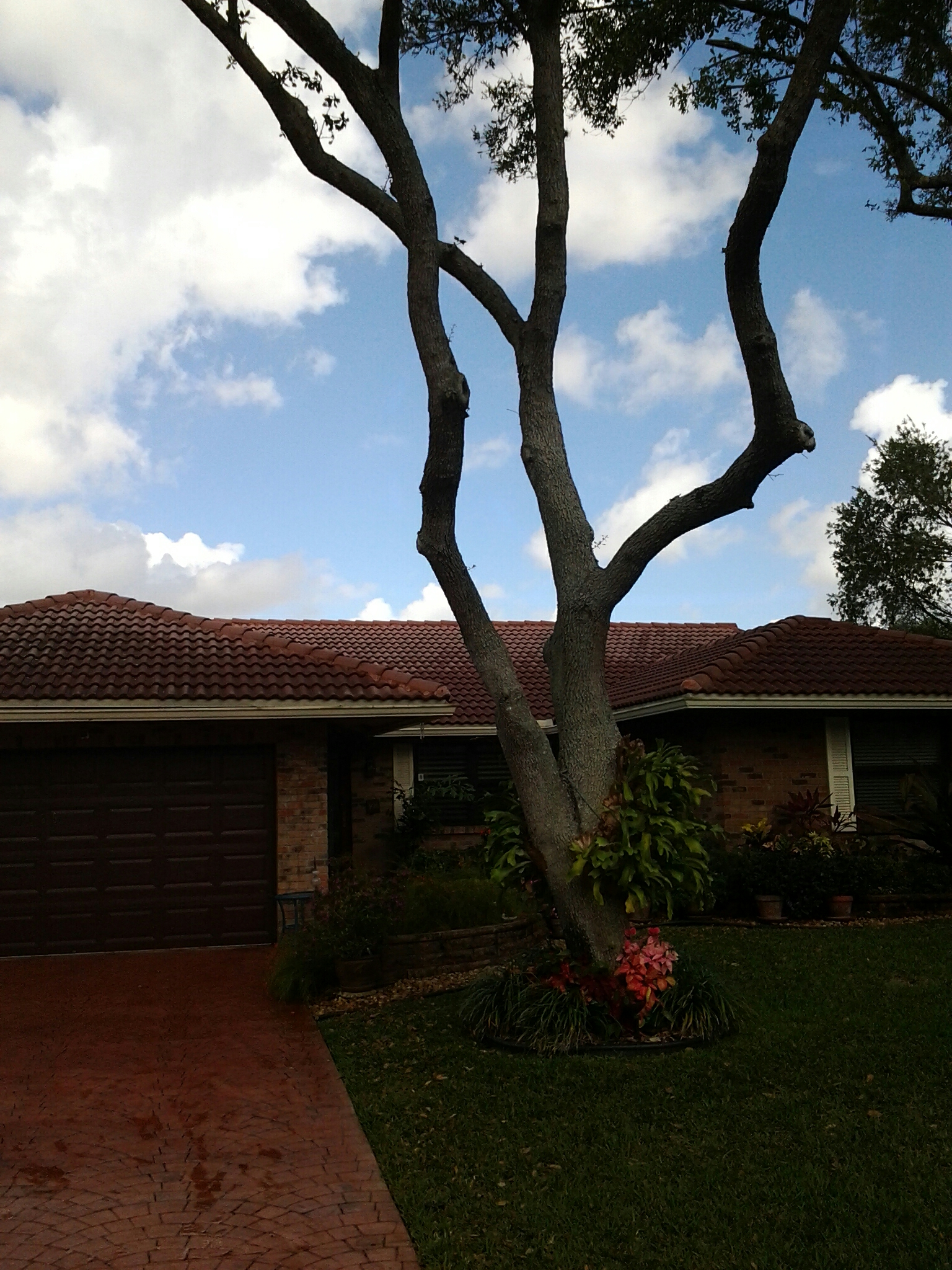 Coral Springs, FL - Clean edges and roofacide roof