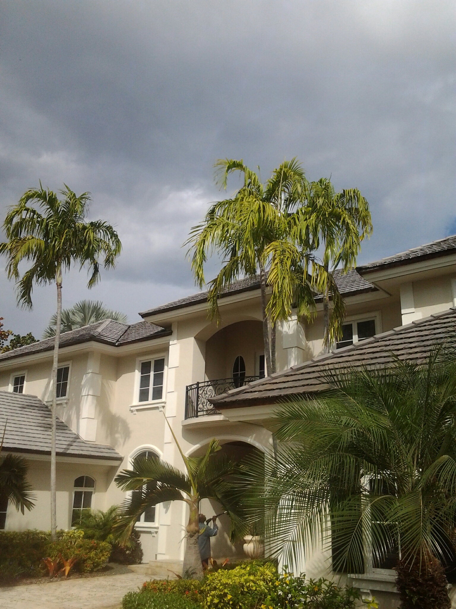 Pinecrest, FL - Pressure clean roof