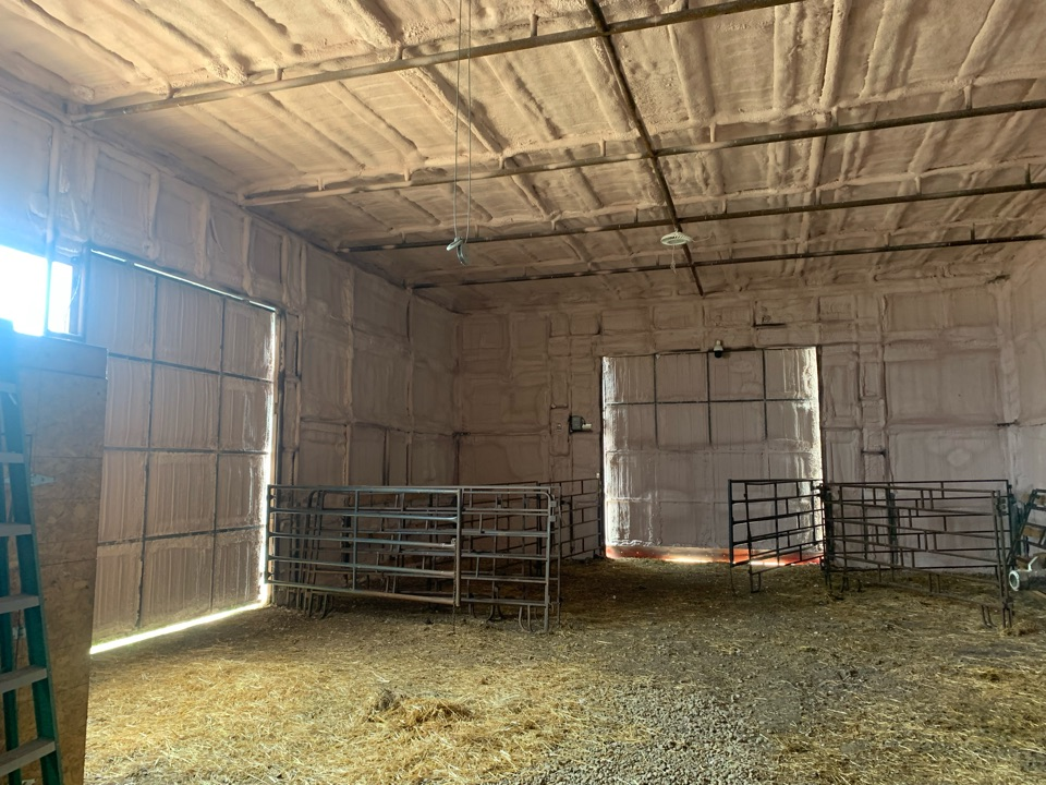 Baldwinton, SK - Sprayfoam cattle barn .cows  are going to love it when winter time comes