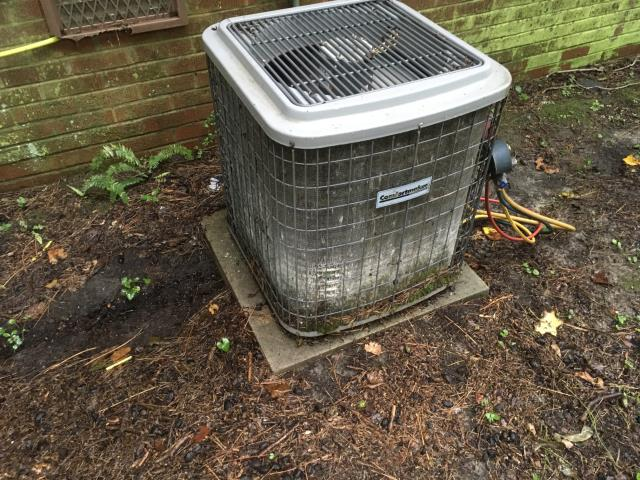 Greenville, NC - Flushed and Cleaned Condensate Line on Split Heat Pump System.